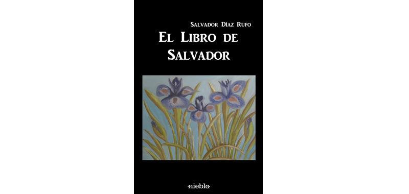 salvadorweb
